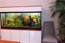 Vestavěné akvárium se skříní na míru